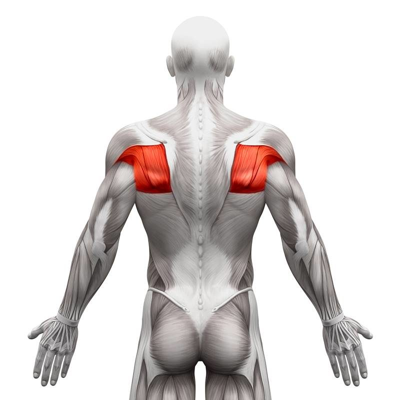 Triggerpunktmassage Bereich Schulter